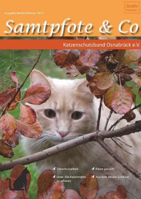 Samtpfote Herbst/Winter 2017