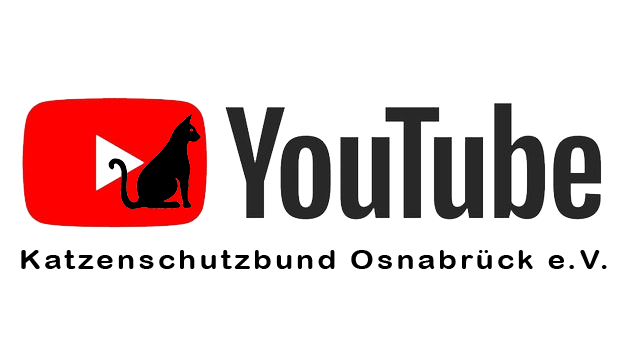 Unser Video-Channel